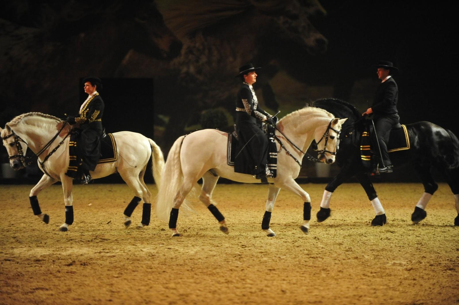 Manège Baroque auf der Pferd&Jagd