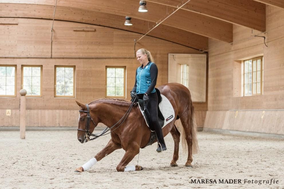 Frederiksborger Pferde, Anja Beran und Sirius
