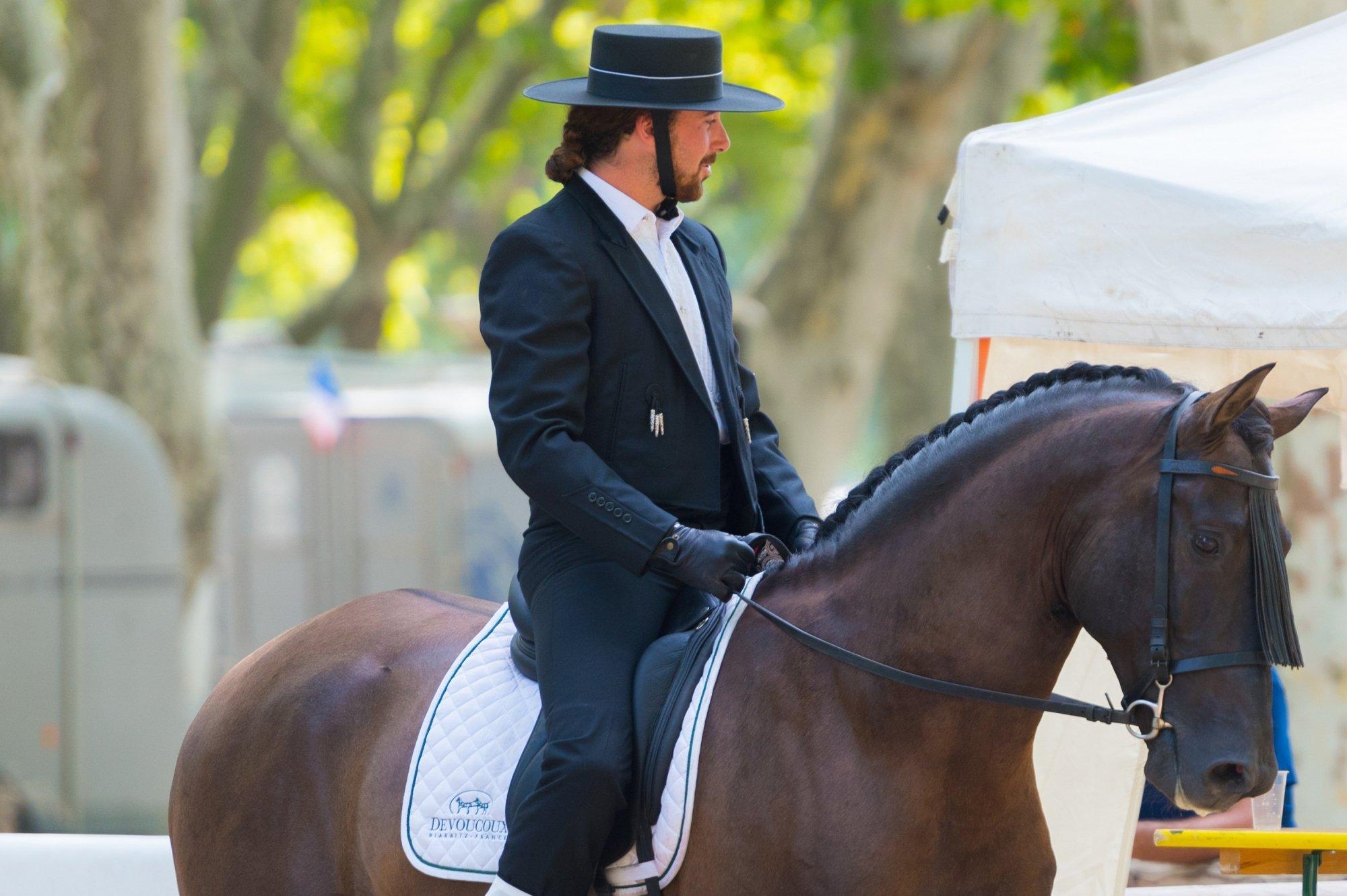 Herpes-Impfpflicht für Turnierpferde, Herpes Pferde, Gesundheit, Impfpflicht Turnierpferde, Barockturniere