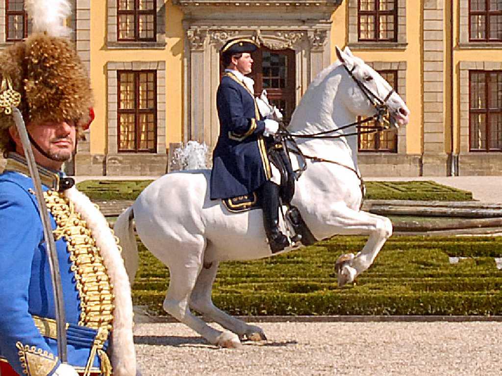 Bundesverband barocke Reiterei, Hinrichs