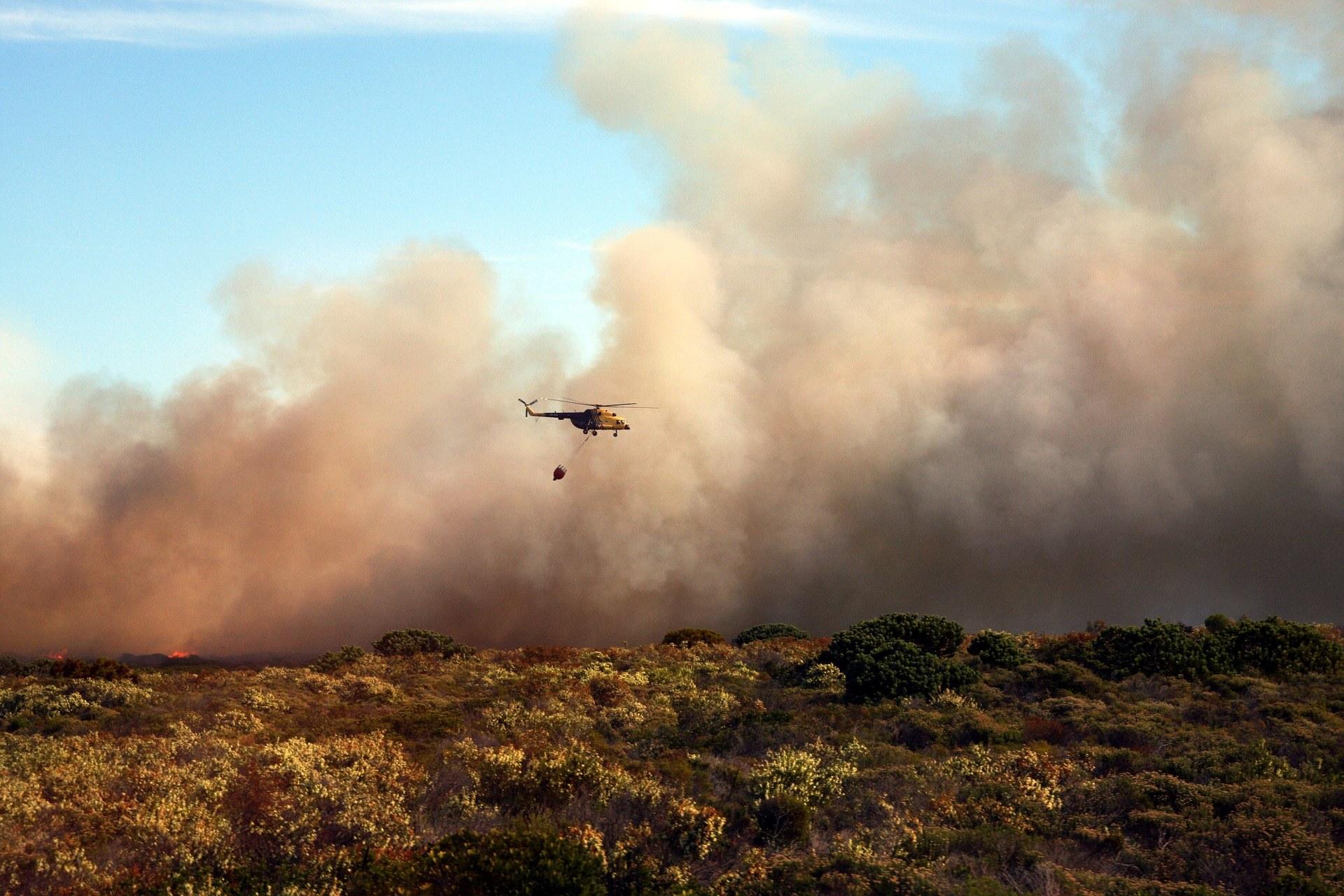 Hilfe für Opfer der australischen Buschbrände